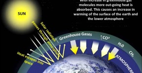 Combing The Atmosphere to Measure Greenhouse Gases